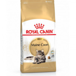 Royal Canin Maine Coon 31 - 2 kg