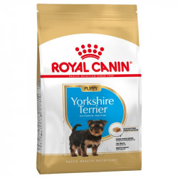 Royal Canin Yorkshire Terrier Junior - 1,5 kg